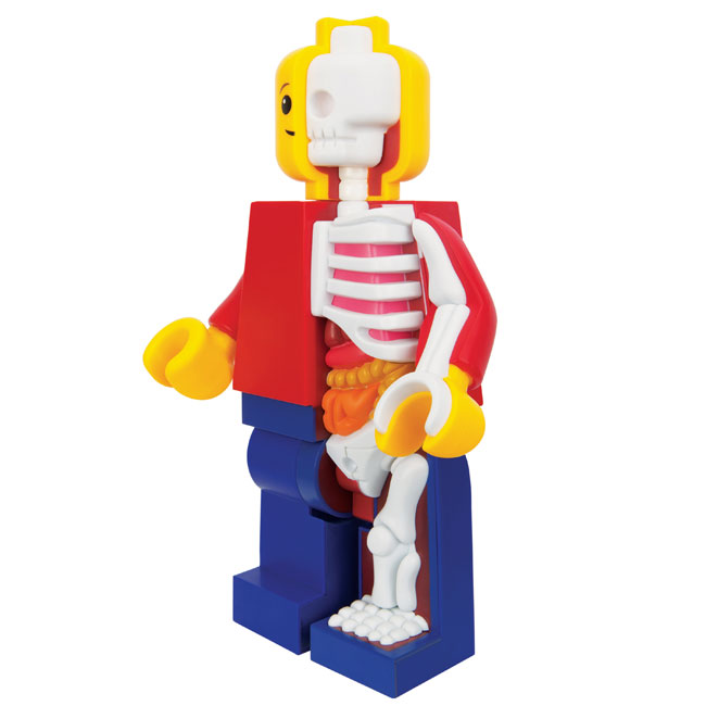 mighty-jaxx-jason-freeny-bigger-micro-anatomic-junior-2